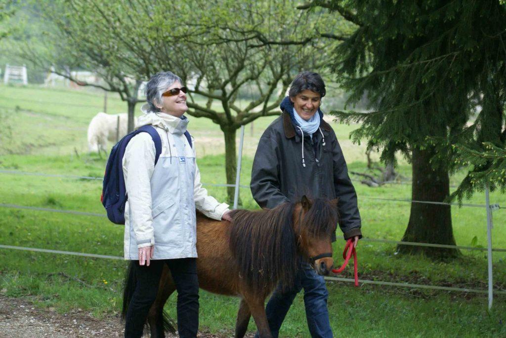 Guidage Mini chevaux