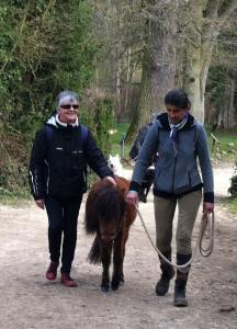 Quintette cheval guide d'aveugle