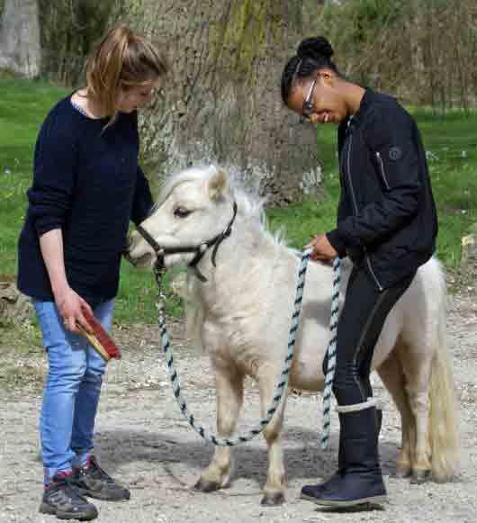 Owina et Palomina